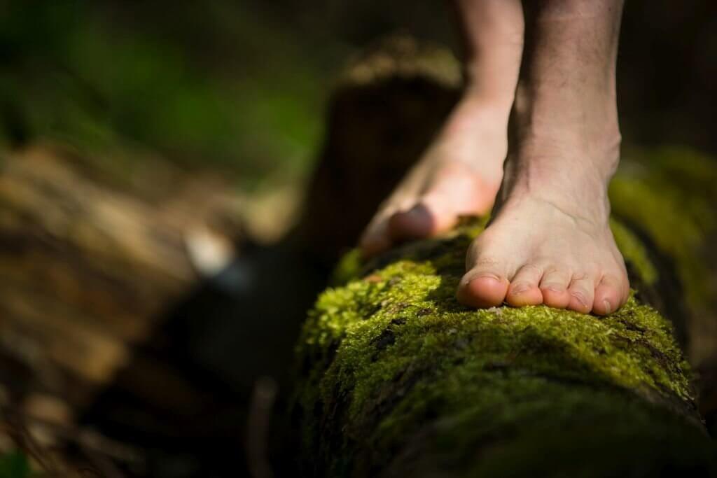 activiteiten bij naturistenverenigingen september oktober