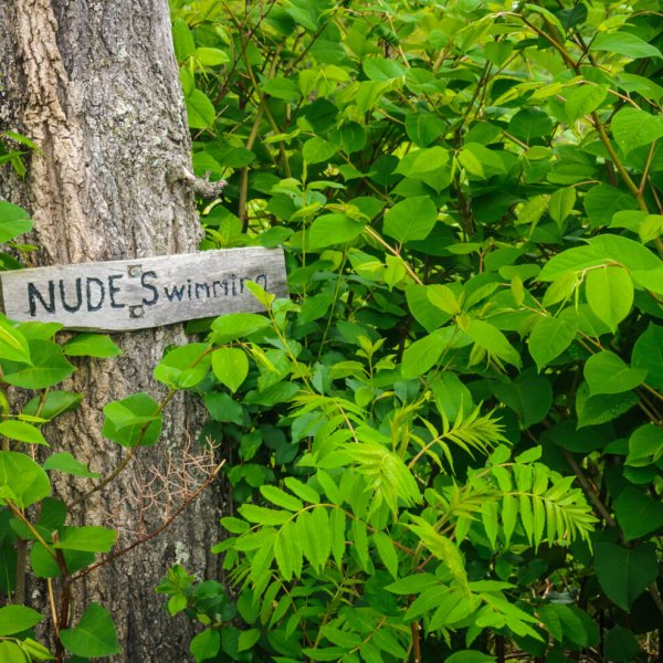 A hand made sign pointing the way to a nude swimming hole is nailed to a tree in central Vermont.